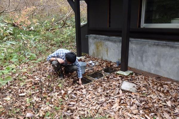 簡易浄化槽の堆積物を手網で除去